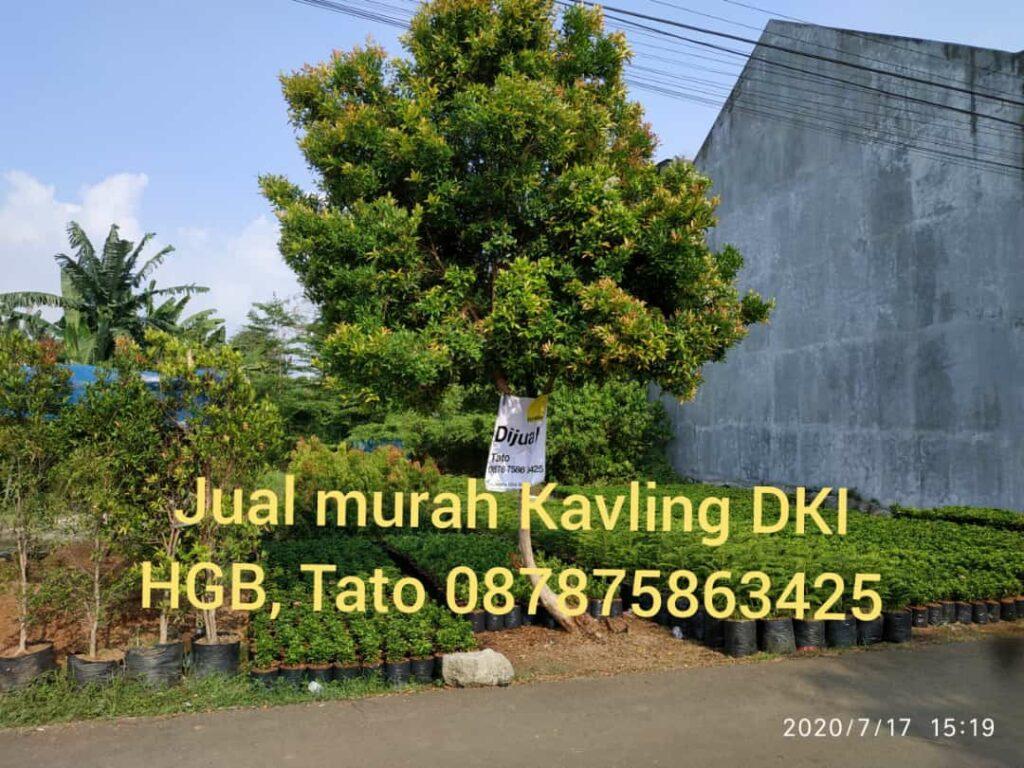 Jual Kavling  315 SHGB Kavling DKI Jakarta Tatoproperty 087875863425